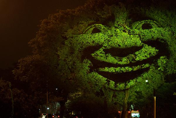 Feeling Tree 2014