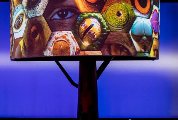 Exposição Inovanças – Criações à Brasileira | Museu do Amanhã