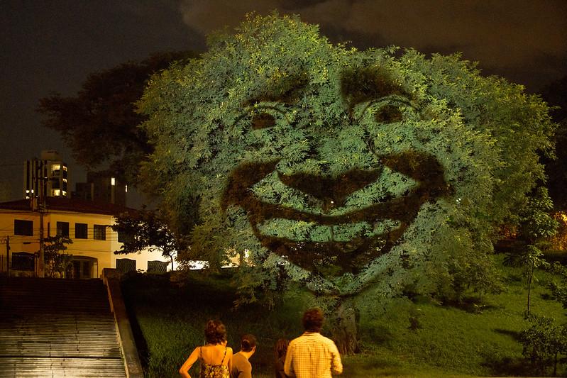 Árvore que Sente | Estúdio Laborg